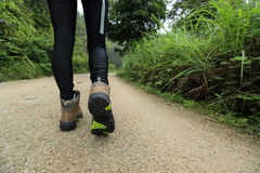 Woman hiker legs hiking Stock Photography