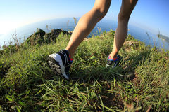 Woman hiker legs hiking on seaside mountain Stock Image