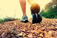 Woman hiker legs walking on seaside mountain trail Royalty Free Stock Image