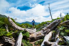 Woman hiker moves through difficult terrain royalty free stock photo
