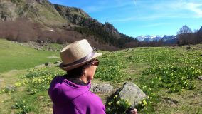 Woman hiker on the path in the french Pyrenees. A woman hiker on the path in the french Pyrenees stock video