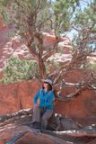 Woman hiker resting under a tree Stock Images