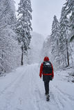 Woman hiker on a snowy trail Stock Images