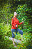 Woman hiker with sticks in forest. Tourism concept. Woman hiker with sticks in forest outdoor. Tourism concept Royalty Free Stock Image