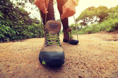 Woman hiker tying shoelace on forest trail Royalty Free Stock Images