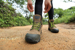 Woman hiker tying shoelace on forest trail Stock Photos