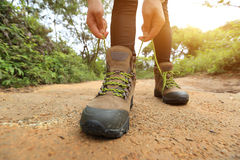 Woman hiker tying shoelace on forest trail Royalty Free Stock Photo