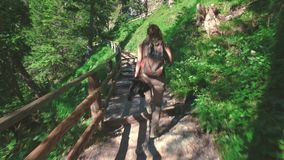 Woman hiker walking around the Braies lake and enjoys his spectacular sceneries, Dolomites, Italy stock footage