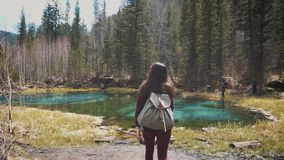 Woman hiker walking around mountain lake and enjoys his spectacular sceneries. On a background of a dense pine forest stock video footage