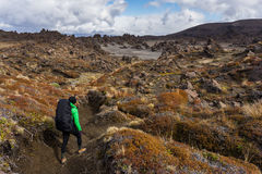 Woman hiker walking on dessert area full of volcanic rocks forma Royalty Free Stock Photo
