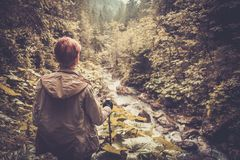 Woman hiker walking in a forest Stock Photos