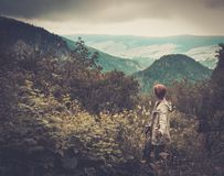 Woman hiker walking in mountain forest Stock Photo