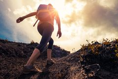 Woman hiker walks on the trail royalty free stock photo