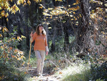 A Woman Hikes with a Walking Stick in the Fall Stock Photo