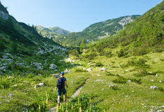 Woman hiking in alps Stock Image