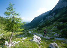 Woman hiking in alps Royalty Free Stock Image