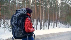 Woman hiking with a backpack in beautiful winter forest. Steadicam shot. Young woman hiking with a backpack in beautiful winter forest, walking on a asphalt stock footage