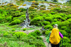 Woman hiking with backpack in mountains Royalty Free Stock Images