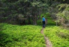 Woman hiking Stock Photography