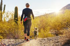Woman Hiking With Dog in Phoenix Arizona. Unidentifiable woman walking a dog on a hiking path in Mountain View Park in Phoenix, Arizona royalty free stock image