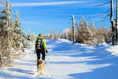Woman hiking with dog in winter Royalty Free Stock Photos