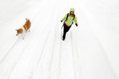 Woman hiking with dog on winter road and snow Stock Image