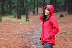Woman Hiking in Forest royalty free stock photography
