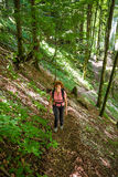 Woman hiking into the forest Royalty Free Stock Image