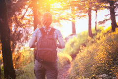 Woman Hiking in Forest at Sunset Royalty Free Stock Photography