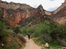 Woman hiking in grand canyon trail Royalty Free Stock Photos