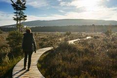 Woman hiking at Kepler track Royalty Free Stock Image