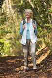 Woman hiking mountain Stock Images
