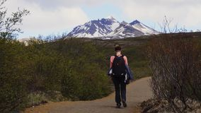 Woman hiking in National park, Iceland. Woman hiking in National park stock video footage