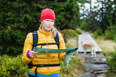 Woman hiking and reading map in forest Royalty Free Stock Images