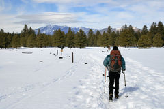 Woman hiking in snow Stock Images