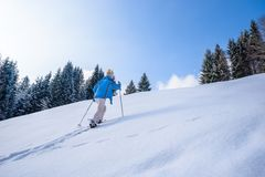 Woman is hiking with snowshoes on snow trail in winter landscape of forest in Oberstdorf, Bavaria Alps in South of Germany. Beautiful landscape with coniferous royalty free stock photos