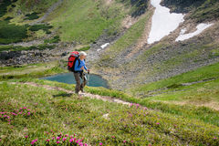 Woman hiking with sticks in Carpathian mountains Stock Photo