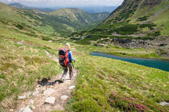Woman hiking with sticks in Carpathian mountains Stock Photography