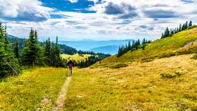 Woman hiking on Tod Mountain near the village of Sun Peaks in BC Canada. Senior Woman hiking through the alpine meadows in fall colors under cloudy sky on Tod stock photo