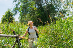 Woman hiking in tropical country Stock Photography