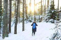 Woman hiking in white winter forest Stock Image