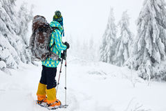 Woman hiking in winter mountains Royalty Free Stock Photography
