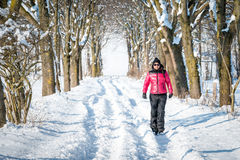 Woman hiking in winter through the snow Stock Image