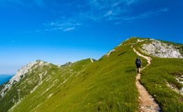 Woman hiking royalty free stock images