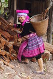 Woman in hill tribe dress. Woman dress in Hmong hill tribe pick up wood for fire stock photos