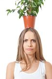 Woman hold houseplant  on white. Royalty Free Stock Photo