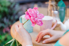 Woman hold one peony flower in street cafe royalty free stock photos