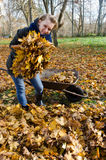 Woman hold pile of autumnal dry leaves in hands Stock Photo