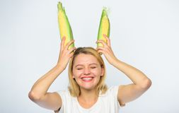 Woman hold yellow corn cob on white background. Girl cheerful playful mood hold ripe corns as bunny ears. Food. Vegetarian and healthy organic product royalty free stock photo