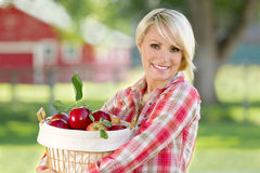 Woman Holding Apples. A young blonde woman holding a basket of apples royalty free stock image